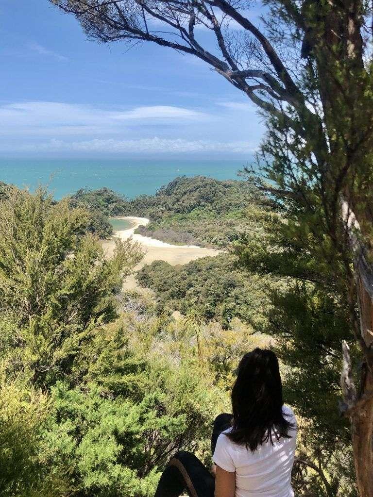 Vista de una de las calas de Abel Tasman desde el Abel Tasman Coast Track