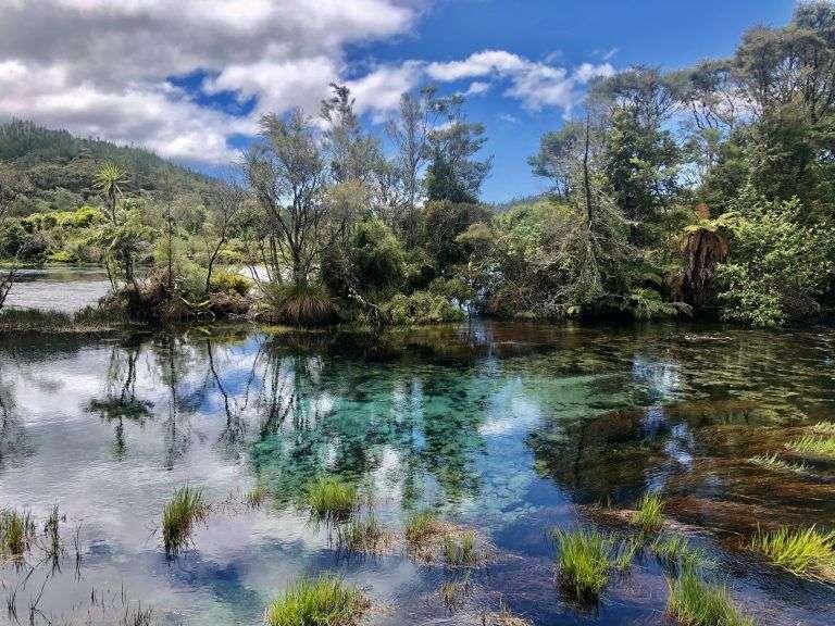 El agua más clara del mundo, The Waikoropupu Springs