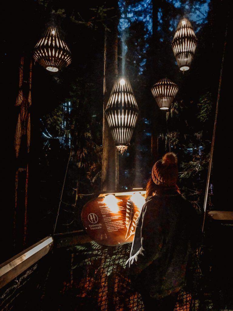 Redwoods treewalk de noche