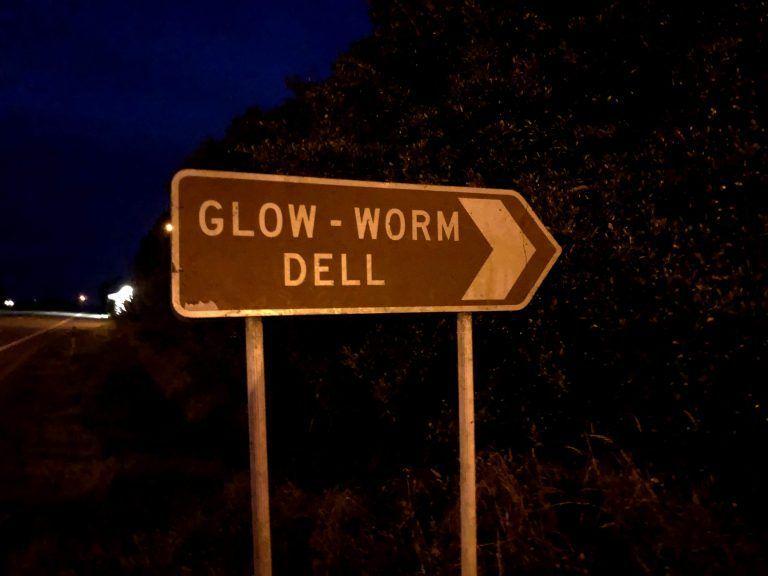 Glow worm dell Hokitika