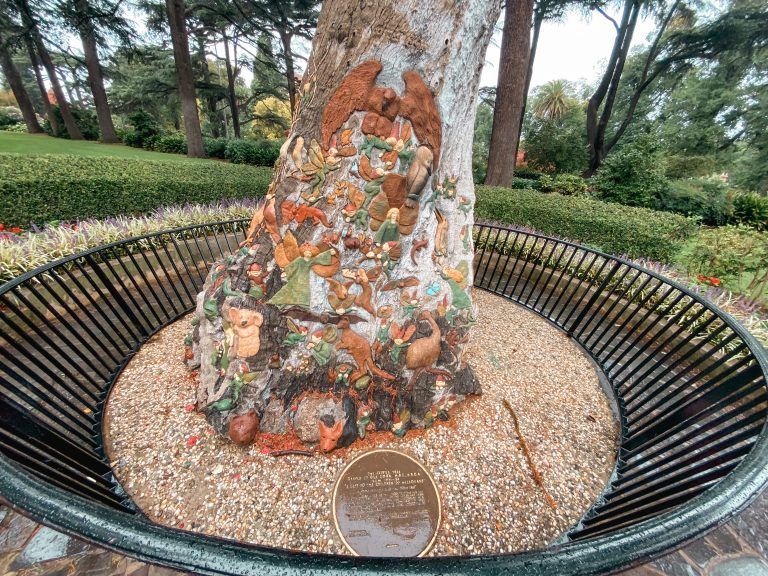 The Fairys tree, Fizroy gardens, Melbourne