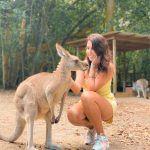 Canguro, Dantree Rainforest